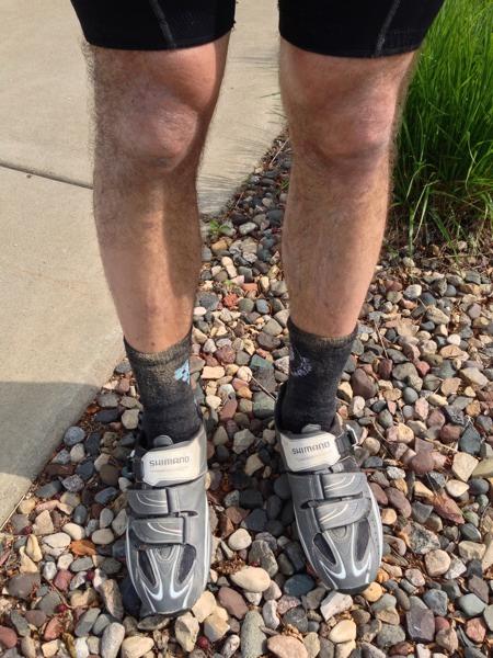 Fried Legs