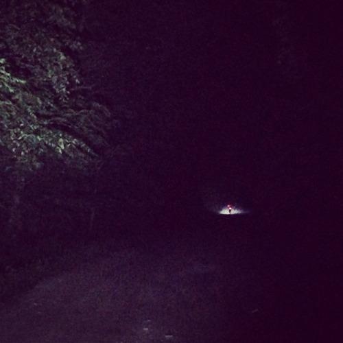 Shady Lane Trail at 11 pm