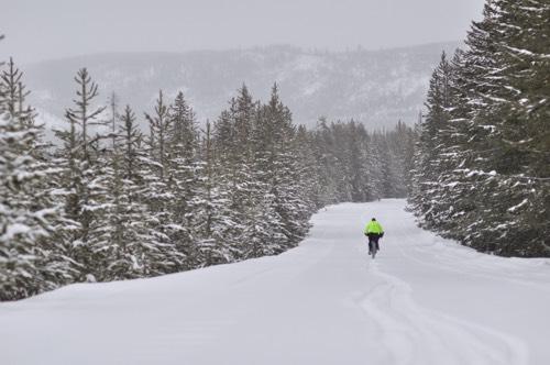 Yellowstone Trails