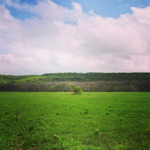 Forestville State Park