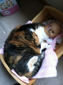 Cradle Nap (May 2011)